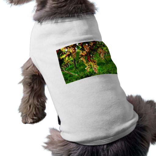 Hanging Grapes on the Vines Dog Clothes