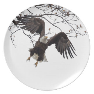 Hanging In Mid-Air Dinner Plates