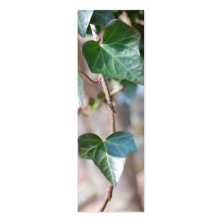 Hanging Ivy Mini Business Card