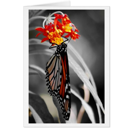 Hanging Monarch butterfly Card
