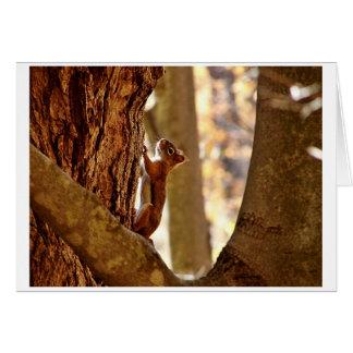 Hanging On Greeting Card
