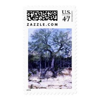 Hanging On Postage Stamp