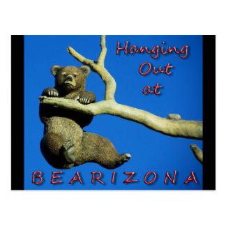 Hanging Out @ Bearizona Postcard