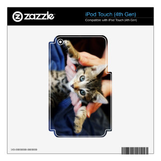 Hanging Out Tabby Skins For iPod Touch 4G