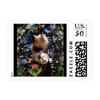 Hanging Out This Christmas | Opossum Style Postage