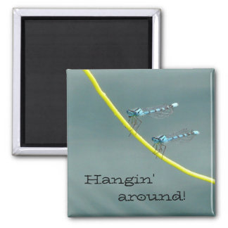 Hanging Out with Damsel Flies 2 Inch Square Magnet