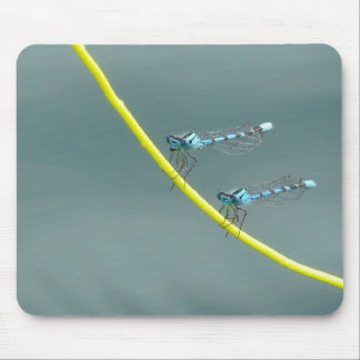 Hanging Out with Damsel Flies Mouse Pad