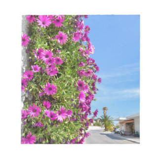 Hanging pink spanish daisies on wall near street notepad