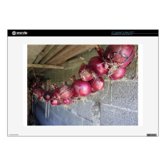 Hanging red onion collection decals for laptops