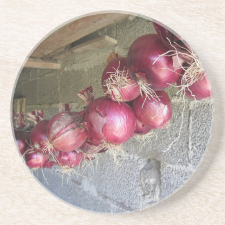 Hanging red onion collection drink coaster