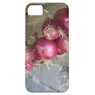 Hanging red onion collection iPhone SE/5/5s case