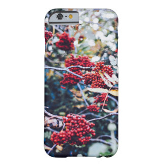 hanging red young coffee beans barely there iPhone 6 case