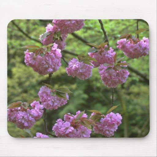 Hanging Rose Mouse Pads