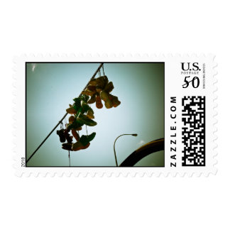 Hanging Sneakers Postage