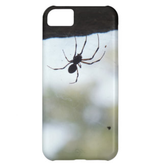 Hanging Spider Silhouette iPhone 5C Covers
