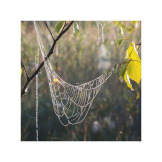 Hanging spiderwebs canvas print