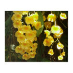 Hanging Yellow Orchids Tropical Flowers Acrylic Wall Art