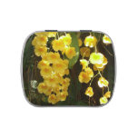 Hanging Yellow Orchids Tropical Flowers Jelly Belly Candy Tin