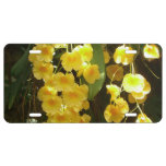 Hanging Yellow Orchids Tropical Flowers License Plate