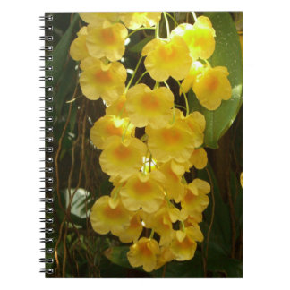 Hanging Yellow Orchids Tropical Flowers Spiral Note Books