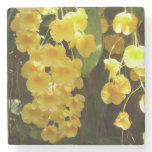 Hanging Yellow Orchids Tropical Flowers Stone Coaster