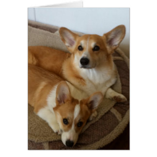 Hank and Milly Greeting Card