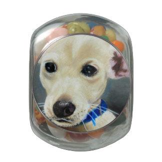 Hank Jelly Belly Candy Jar