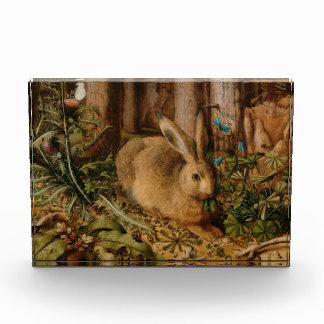 Hans Hoffmann A Hare In The Forest Award