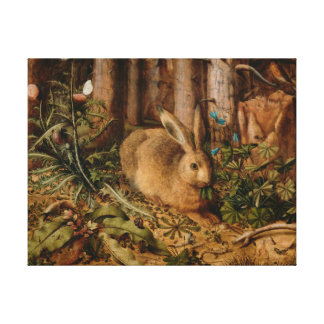 Hans Hoffmann A Hare In The Forest Canvas Print