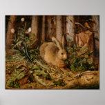 Hans Hoffmann una liebre en el bosque Impresiones