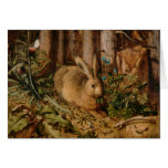 Hans Hoffmann una liebre en el bosque Tarjeta