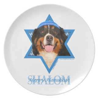 Hanukkah Star of David - Bernese Mountain Dog Plates