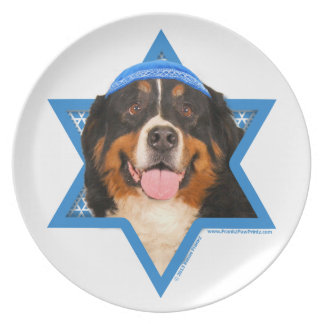Hanukkah Star of David - Bernese Mountain Dog Dinner Plates