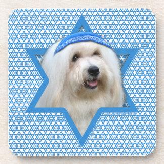 Hanukkah Star of David - Coton de Tulear Coaster