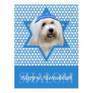 Hanukkah Star of David - Coton de Tulear Postcard