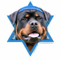 Hanukkah Star of David - Rottweiler Statuette