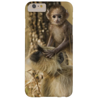 Hanuman Langur adult with young Barely There iPhone 6 Plus Case