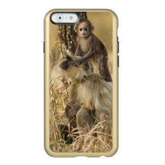 Hanuman Langur adult with young Incipio Feather® Shine iPhone 6 Case