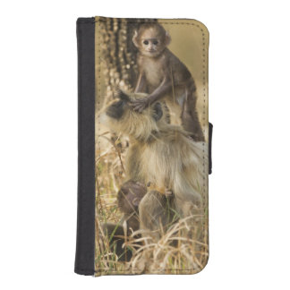 Hanuman Langur adult with young iPhone SE/5/5s Wallet Case