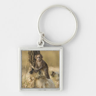 Hanuman Langur adult with young Keychain