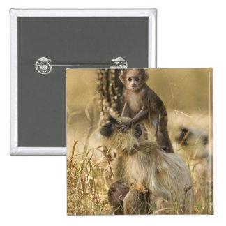 Hanuman Langur adult with young Pinback Button