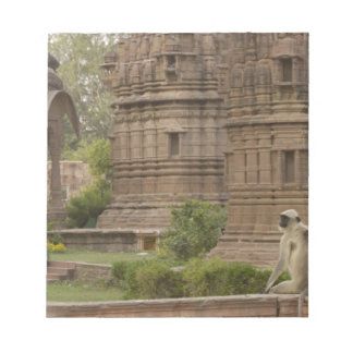 Hanuman Langurs or Black-faced, Common or Grey Notepad