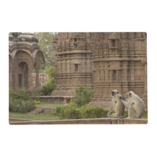Hanuman Langurs or Black-faced, Common or Grey Placemat