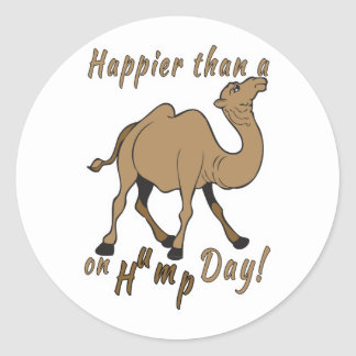 Happier than a Camel on Hump Day Round Stickers