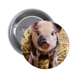 Happines Pig Love Button