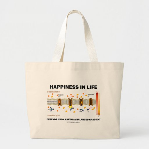 Happiness In Life Depends Upon Balanced Gradient Canvas Bag