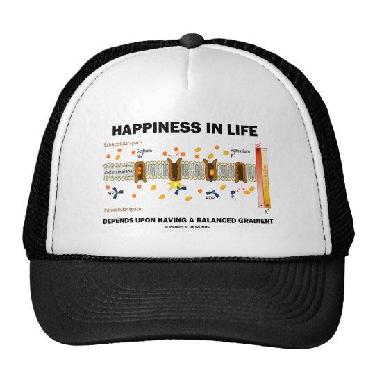 Happiness In Life Depends Upon Balanced Gradient Trucker Hat