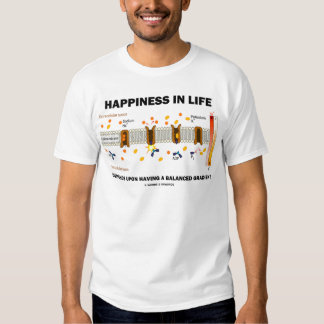 Happiness In Life Depends Upon Balanced Gradient Tshirt