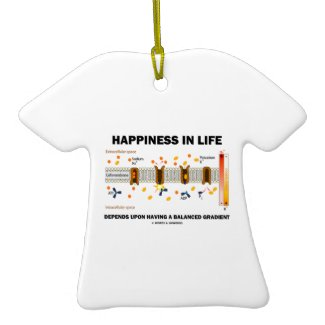Happiness In Life Depends Upon Having Balanced Ornament
