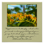 Happiness is a Butterfly framed print